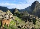 Lama Tempel Südamerika
